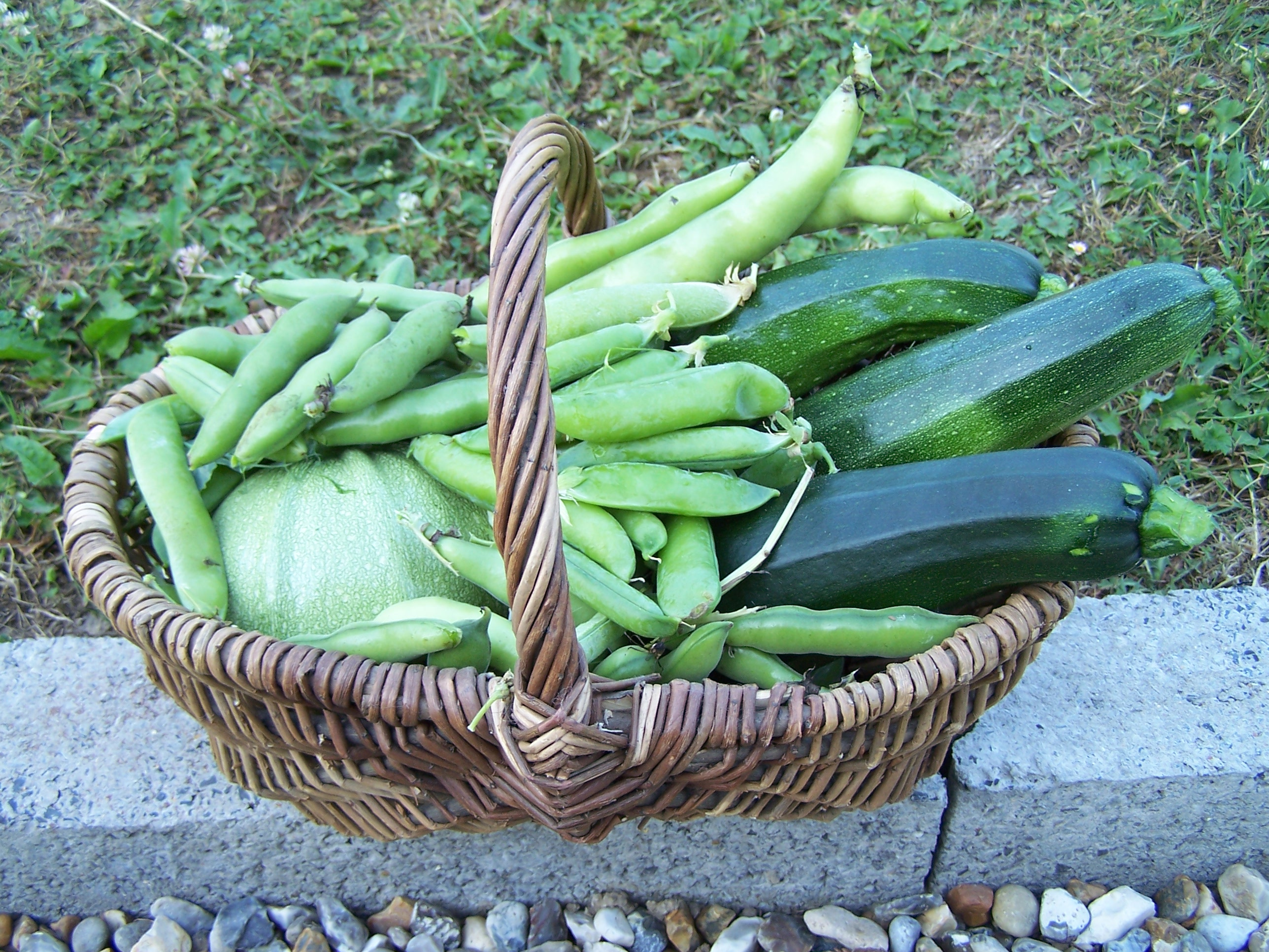 Exemple d'un panier de récolte