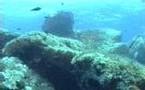 L'épave romaine de Capu di Muru