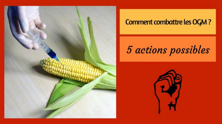 5 actions possibles pour combattre les OGM
