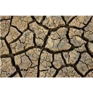 La sécheresse menace...