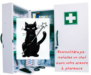 Installez un chat dans votre armoire à pharmacie