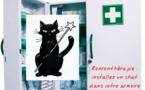 La ronronthérapie : installez un chat dans votre armoire à pharmacie
