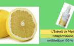 L'Extrait de Pépin de Pamplemousse, un antibiotique 100 % naturel