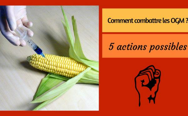 Comment combattre les OGM ? – 5 actions possibles