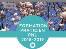 FORMATION PRATICIEN PNL OCTOBRE 2018-JUIN 2019. CONFERENCE GRATUITE DE PRESENTATION  LUNDI 24 SEPTEMBRE A PARIS